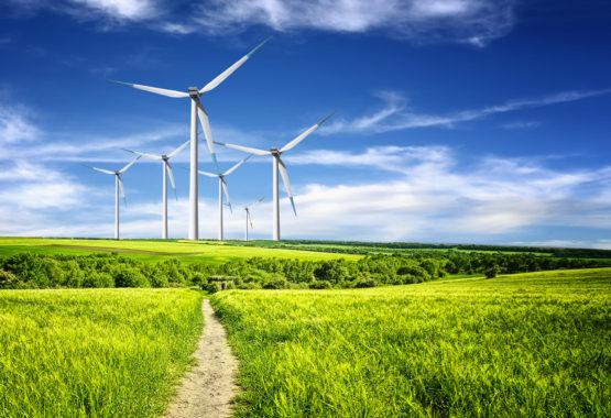 Carbon reduction mustn't affect the competitiveness of UK businesses