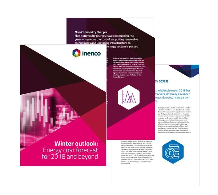 Winter Energy Report  image